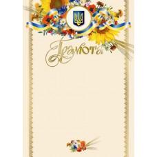 Грамота 32з