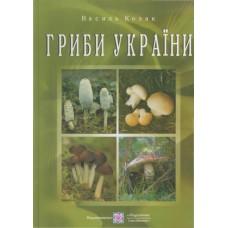 Гриби України