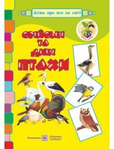 Свійські та дикі птахи. Демонстраційні картки