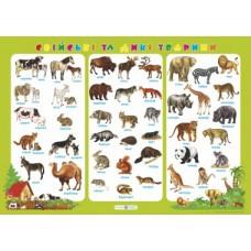 Плакат Свійські та дикі тварини