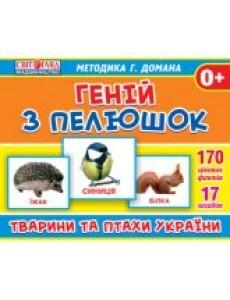 """Геній з пелюшок """"Тварини та птахи України"""""""