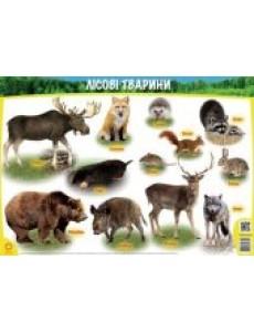 Плакат Ліосві тварини А1